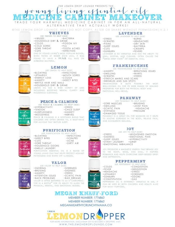 MEDICINE CABINET MAKEOVER v2.1